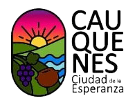 Cauquenes.cl